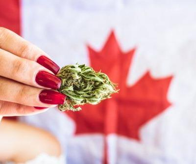 The cannabis producer Cronos posts strong revenue growth but a bigger loss