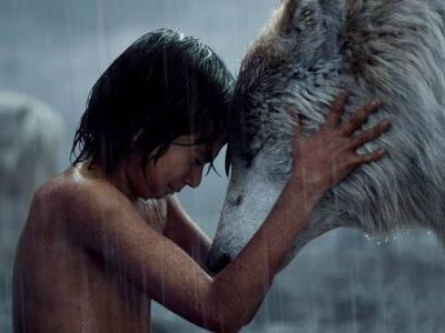 The Jungle Book: 10 Big Changes They Made From The Original Cartoon