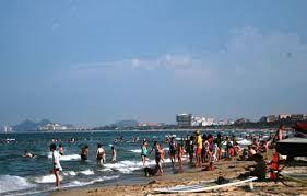 Vietnam's Da Nang's issues master plan to develop Son Tra National Tourism Area