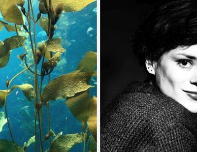 Startup making seaweed textile wins 100,000 euro in sustainability contest