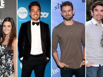 There's a New 'Bachelor' Type Spinoff Show Coming Starring All Your Favorite Alums