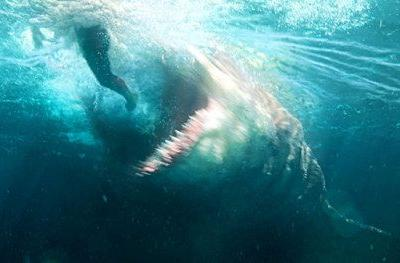 The Meg Sinks Its Teeth Into $44.5M at the Box OfficeThe Meg