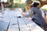 10 Best Summer Wines For Day Drinking