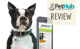 PetHub Reviews: More Information on One Tag