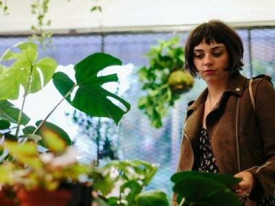 Houseplant Experts Have Spoken: These Are The Plants Even They Avoid