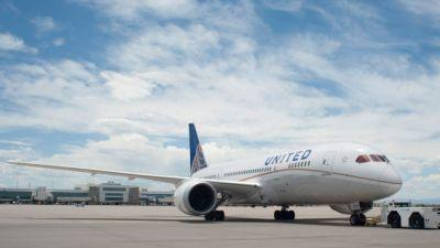 One-Third Of U.S. Animal Airline Deaths In The Last Five Years Occurred On United Flights