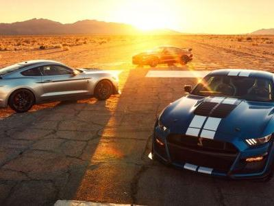 Ford's Mustang GT500 Might Share Gearboxes With The C8 Corvette