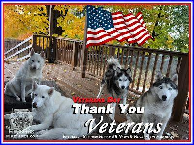 Veterans Day: Thank You For Your Service