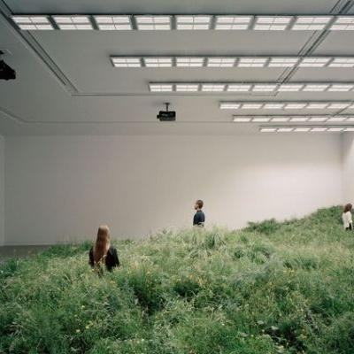 How to Design a Biennale: Is Freespace Free?