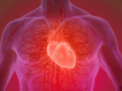 Severe COVID-19 Might Injure the Heart