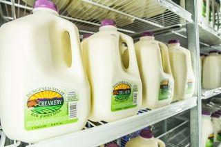 Dungeness Valley Creamery Raw Milk linked to E. coli Illnesses - Again