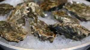 221 with Norovirus linked to B.C. Oysters