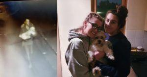 Social Media Army And CCTV Help Reunite Stolen Dog With Family