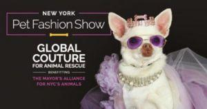 New York Pet Fashion Show to Help Dogs in Need
