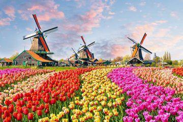 Our Top 5 Day Trips from Amsterdam