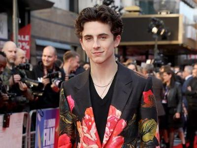 Timothée Chalamet Goes Full 'Chalamet in Art' in Alexander McQueen