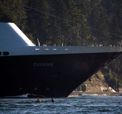Leaked audio reveals 4 Holland America passengers have died and 2 have tested positive for COVID-19 onboard the stranded Zaandam ship. And now the cruise line is scrambling to rescue healthy passengers