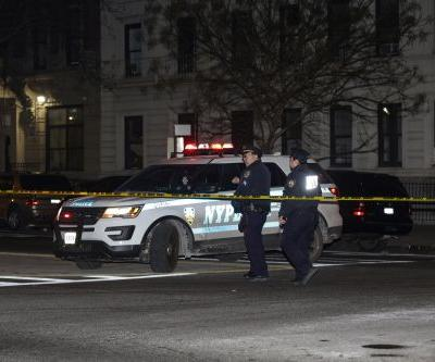 Pedestrian killed by hit-and-run driver