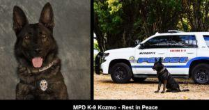 Loyal Police Dog Brutally Killed By 16-Year-Old Robbery Suspect