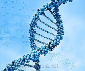 Gene Therapy Aids in Treating Alcoholism