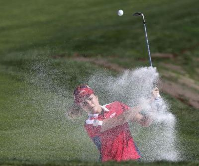 LPGA's top golfers inspire amid record prize money but U.S. viewership drop