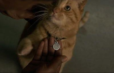 This 'Captain Marvel' Fan Theory About Nick & The Cat Will Make You Rethink Everything