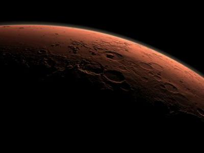 """Life on the Red Planet: Meteorite from Mars shows evidence of """"fossilized bacteria"""""""