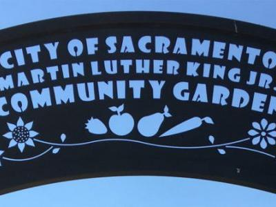 Sacramento Is Making Urban Agriculture a Way of Life