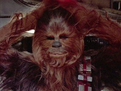 Fully Shaved Chewbacca Is The Most Horrifying Thing Ever