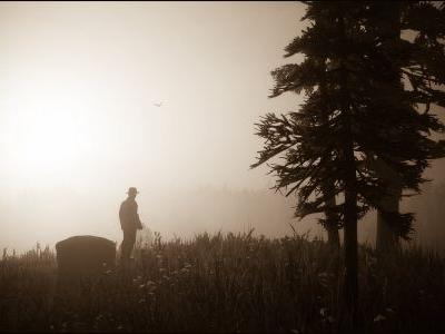 I played 'Red Dead Redemption 2' as a cowboy photographer - here are my favorite photos showing the insane level of detail in the game