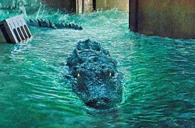 Crawl Special Feature Clip Goes Inside an Alligator Infested