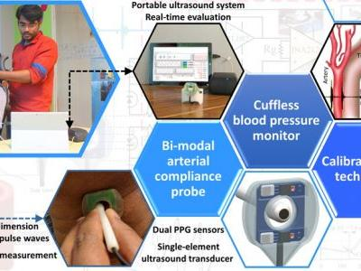 Bi-Modal Arterial Compliance Probe for Calibration-Free Cuffless Blood Pressure Estimation