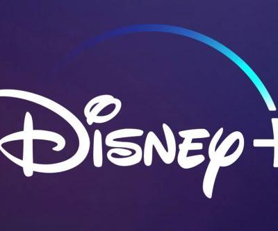 Disney CEO Bob Iger Confirms Their Netflix Rival Streaming Service Will Be Called Disney+