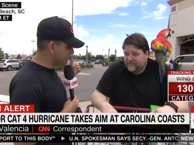 CNN Interviews Hurricane Florence Shopper, Completely Ignores 'Chill' Parrot on His Shoulder