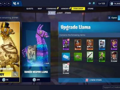 Fortnite Save the World X-Ray Llamas let you see what's inside before purchasing