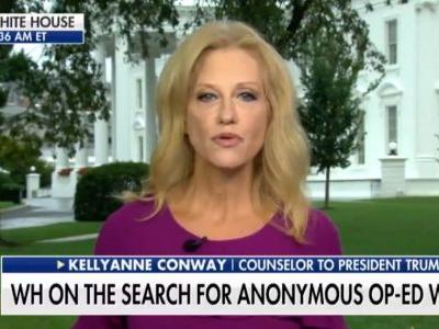 Kellyanne Conway Attacks Op-Ed Writer as Cowardly.Weeks After Trying to Trash Own Husband Anonymously