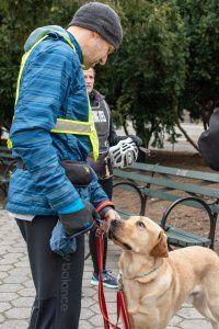 NYC Half Marathon Guide Dog Relay