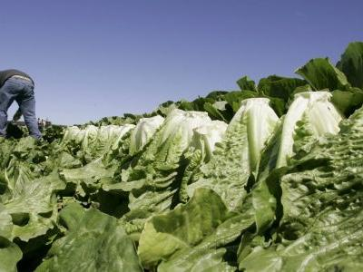 CDC's warning on E. coli outbreak expands to all romaine lettuce