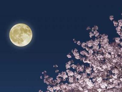 April's Pink Moon will illuminate the sky on Good Friday this year