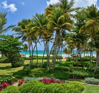 St. Regis Bahia Beach Resort Launches Elementia Program