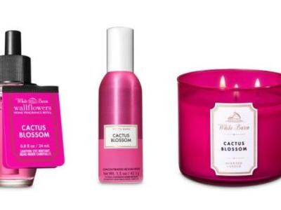 Bath & Body Works' Summer Scent Is Desert-Inspired With a Lemon Twist