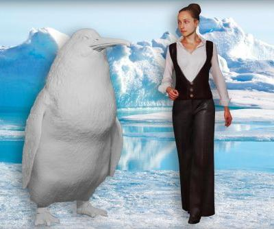 Monster penguins the size of humans once roamed New Zealand