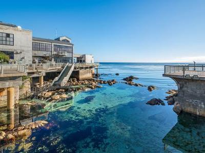 10 Top Monterey, Carmel And Big Sur Attractions
