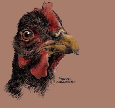Joining tinawaynearts in her chicken fetish tonight. drawing