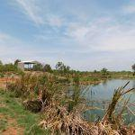 Derby Poo Ponds and waste water wetland upgrade