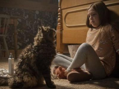 Pet Sematary 2019's Leo The Cat Passes Away