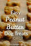 Recipe: Easy Peanut Butter Dog Treats