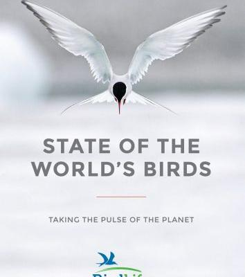 2018 Global Report: 40% Of World's Birds Are In Decline