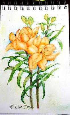 Journal - Asiatic Lilies