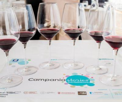 Campania Stories 2019: The Best Wines From The Preview Tasting